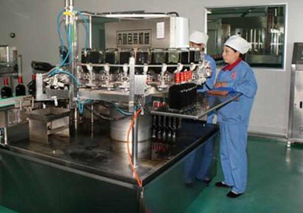 药酒加工蒸汽发生器