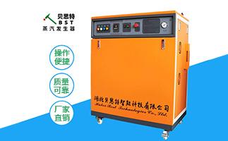 48kw电加热蒸汽发生器 2.jpg