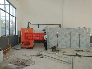 选择药caihonggan蒸汽发sheng器,成为zhong多药changbi备的供re设备
